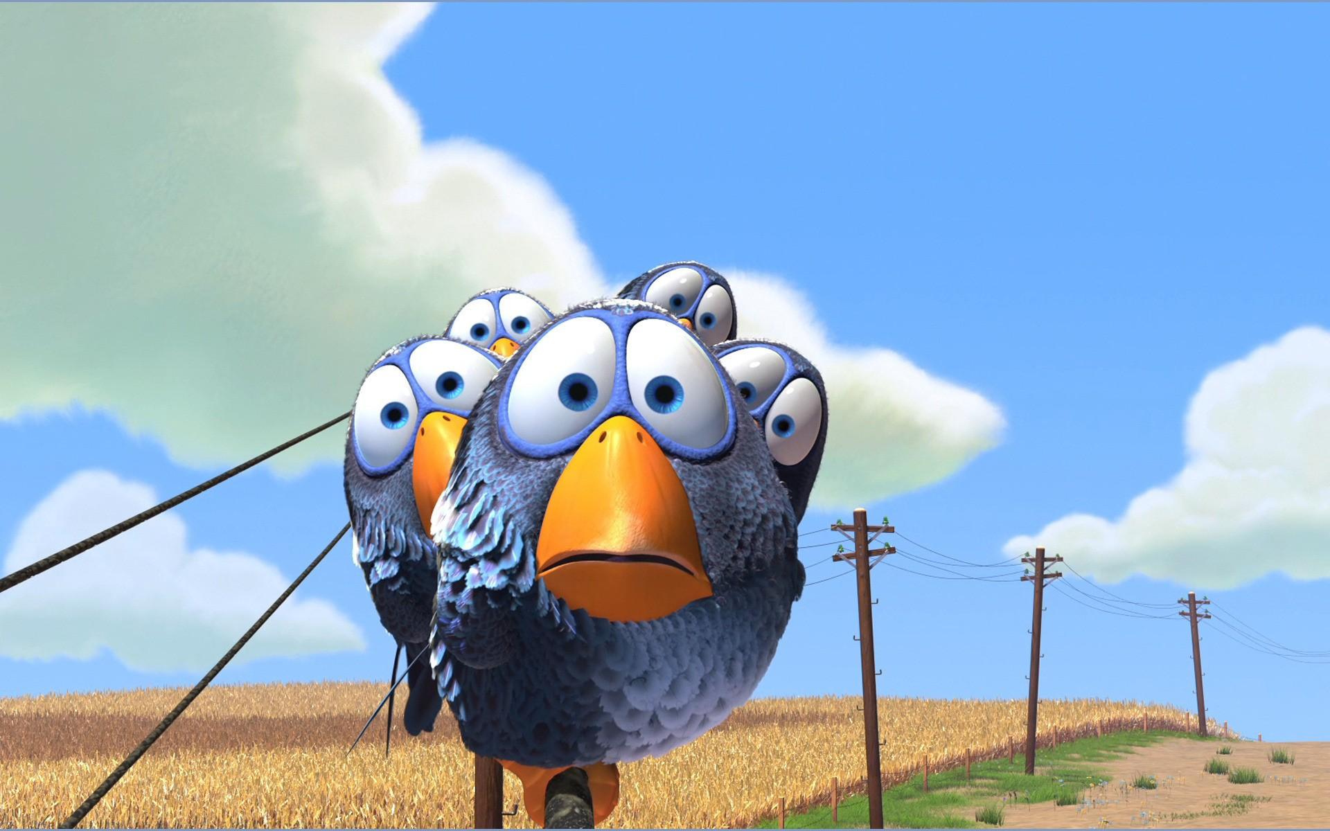 funny-birds-312657